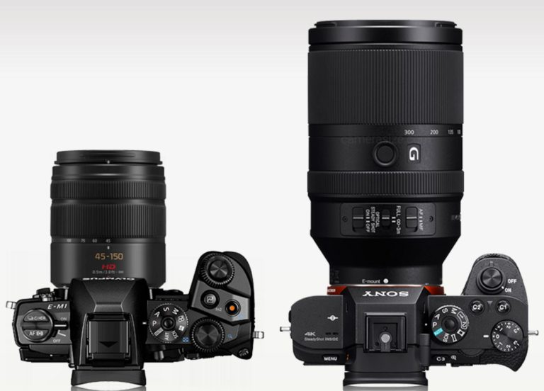 With 70-300mm f/4.0-5.6 IS