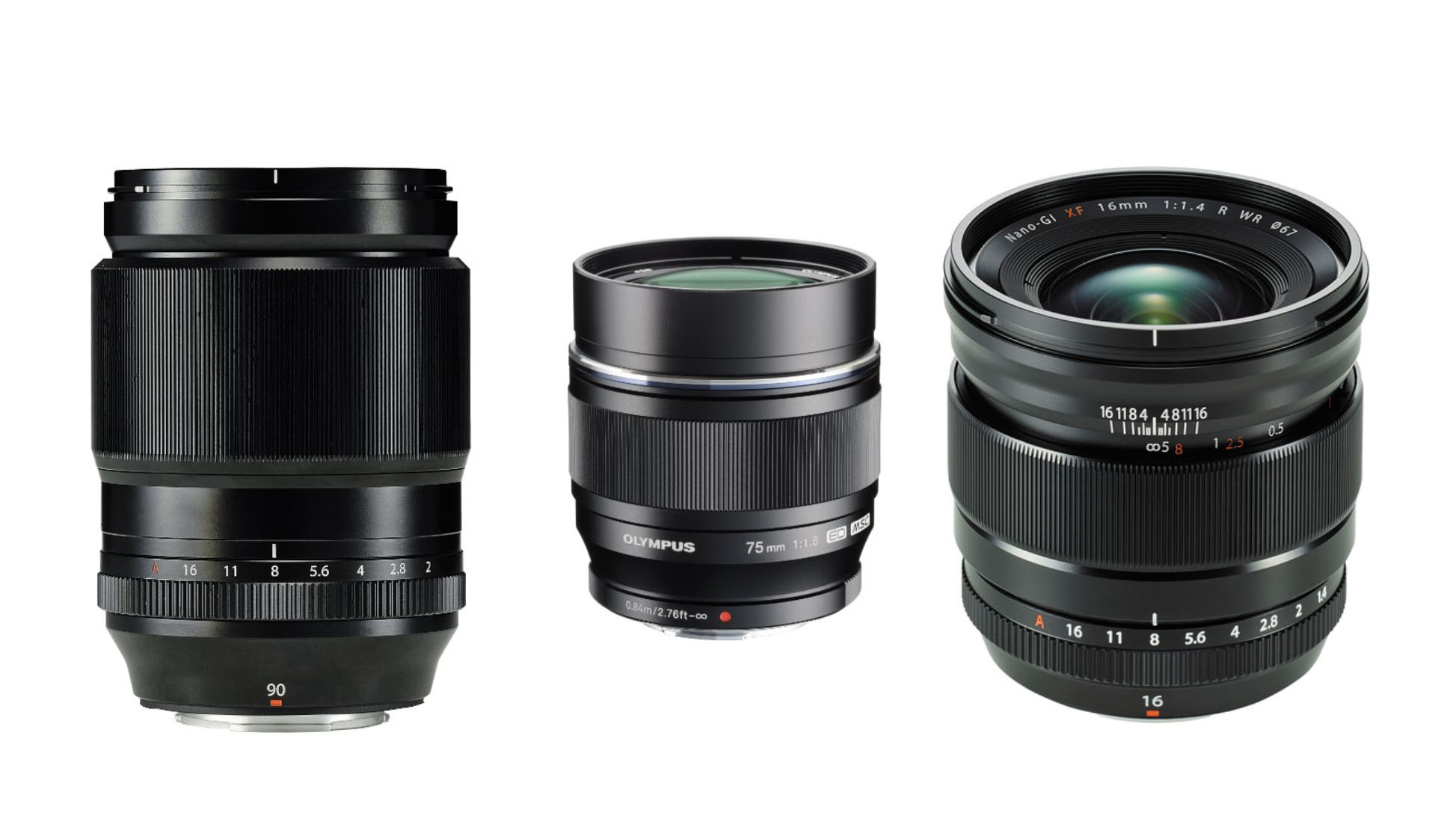 Best Micro Four Thirds Lenses For Travel